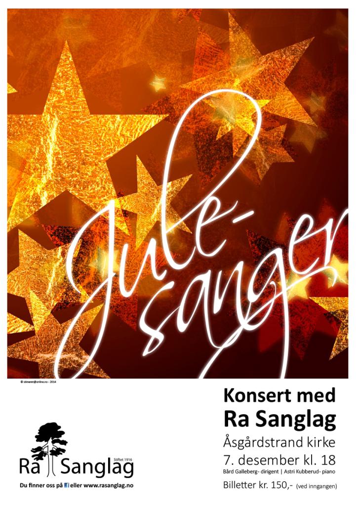 2014 Julekonsert A3 stående
